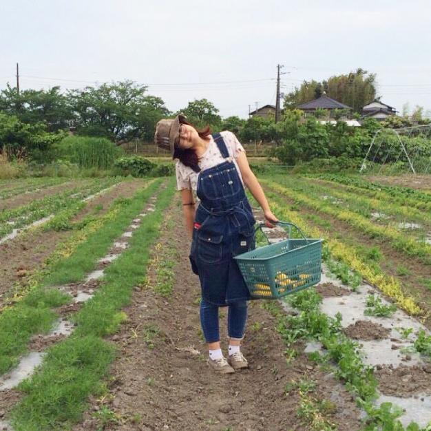 お客様の顔を思い浮かべながら収穫する喜び♡初夏の畑は気持ちいい。